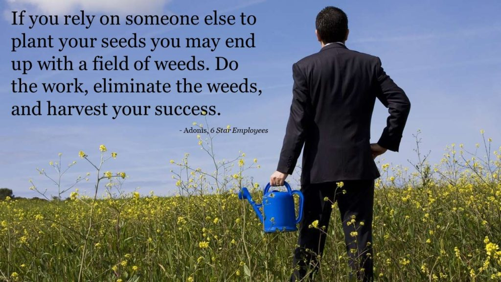 Plant your own